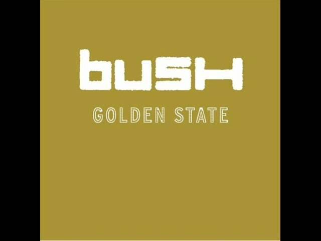 bush-float-jester295