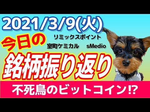 【相場振り返りシリーズ#137】2021年3月9日(火)~不死鳥の仮想通貨!?~