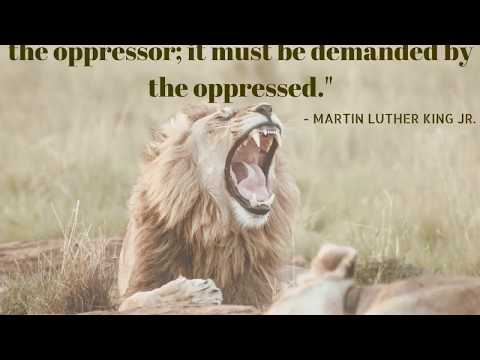 Martin Luther King Jr   Motivational Quotes   Biglychain