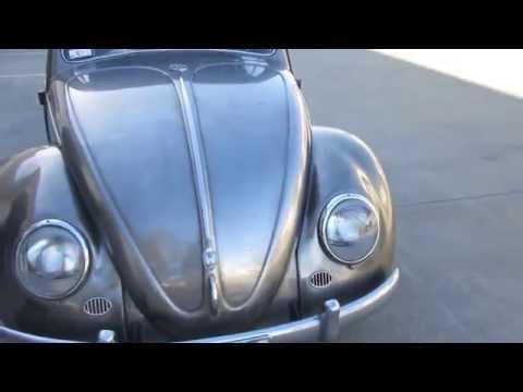1954 Nude Bug