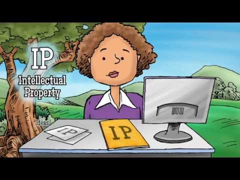 Intellectual Property: MediaPro Privacy Awareness Animation