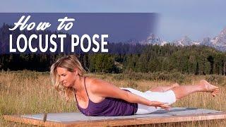 How To Locust Pose or Salabhasana with Amanda Botur