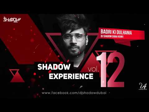 Shadow Experience Vol 12 | DJ Shadow Dubai | Nonstop Mixtape
