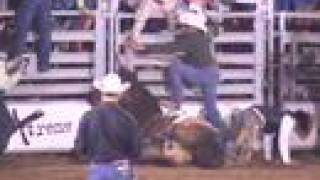 """Born to Buck?"" (Part One) -- The Big Rodeo Lie"