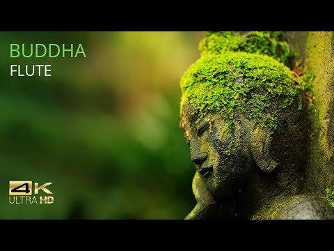 Buddha Relaxing 音楽 to Calm The Mind | 4K | Relaxing Music Station