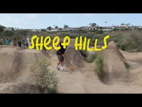 SHEEP HILLS IS ALIVE & RUNNING
