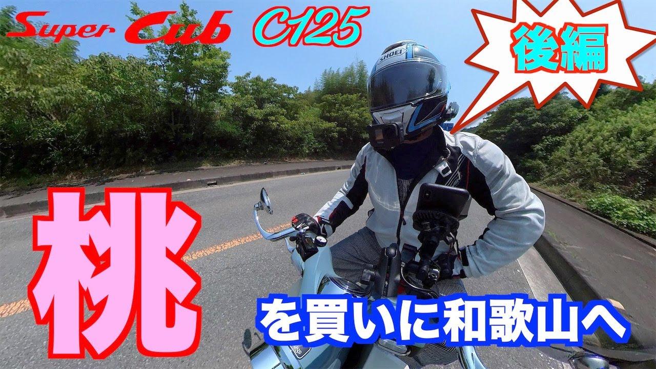 【モトブログ】#239 『後編』桃を買いに和歌山へ (insta360撮影あり)