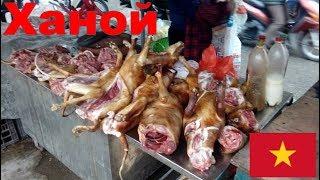 едим собачье мясо в Ханое, Вьетнам 1