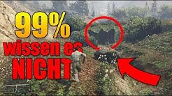 NUR 1% aller GTA Spieler kennen diesen GEHEIMEN ORT - Heftiges Versteck mitten im Berg ! | JanneMann