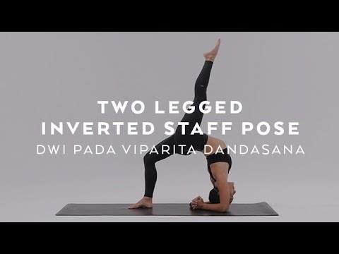 how to do two legged inverted staff pose  dwi pada
