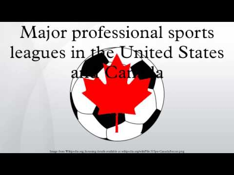 Major professional sports leagues in the United States and Canada