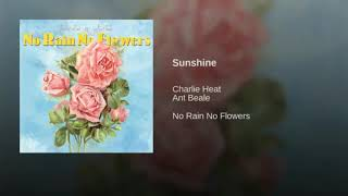 Play Sunshine (feat. Ant Beale)