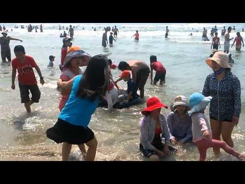 lo banh ngoc diep ( in vung tau )