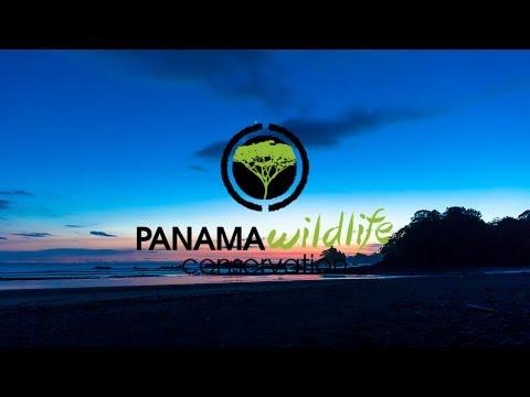 Cerro Hoya National Park Panama