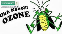 Best Scorpion Control Gold Canyon AZ 2019 (480-493-5028) Ozone Pest Control