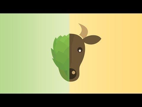 Veganism & Environmentalism