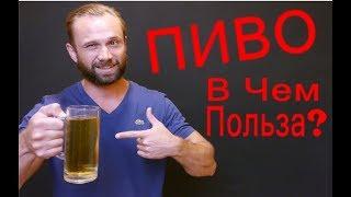 Как Пить ПИВО Без Вреда Для Здоровья / Пиво При Похудении