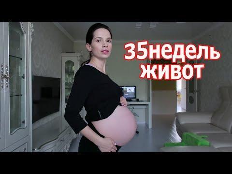 VLOG: 35 недель живот / Перегладила вещи Вовы / Новости от попуги