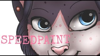 SPEEDPAINT - Miraculous Ladybug Marinette (kittinette)