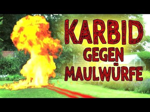 Außergewöhnlich Karbid – Die beste Alternative zu Karbid um Maulwürfe/Wühlmäuse #DR_44