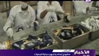 توزيع نصف مليون حافظة أحجار في مكة لرمي الجمرات.. فيديو