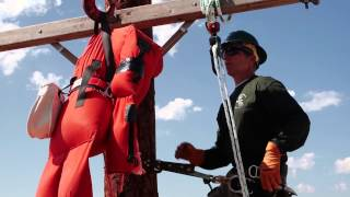 buckingham ox block pole top rescue