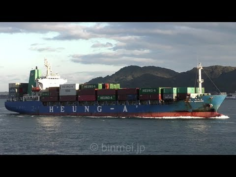 HEUNG-A SINGAPORE - HEUNGA SHIPPING container ship