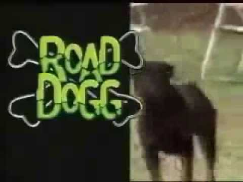 WWE - ''Road Dogg'' Jesse James Theme Song ''Oh You Didn't Know?'' (HD)