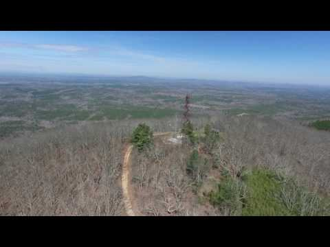 Talladega National Forest 600-1 - Alabama