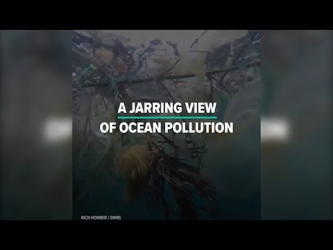 A Diver's Jarring View Of Ocean Pollution