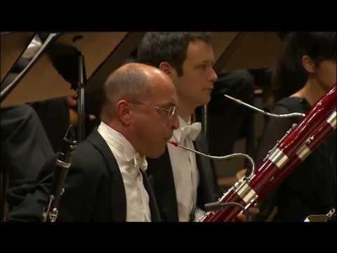 Rite of the spring - Daniele Damiano, Bassoon