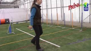 16 bat greenhouse training weave training dayzee
