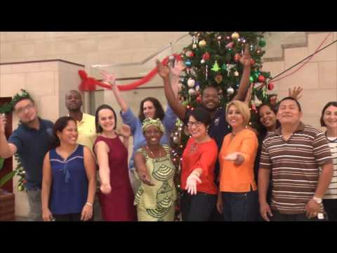 US Embassy Belize 2017 New Year's Message