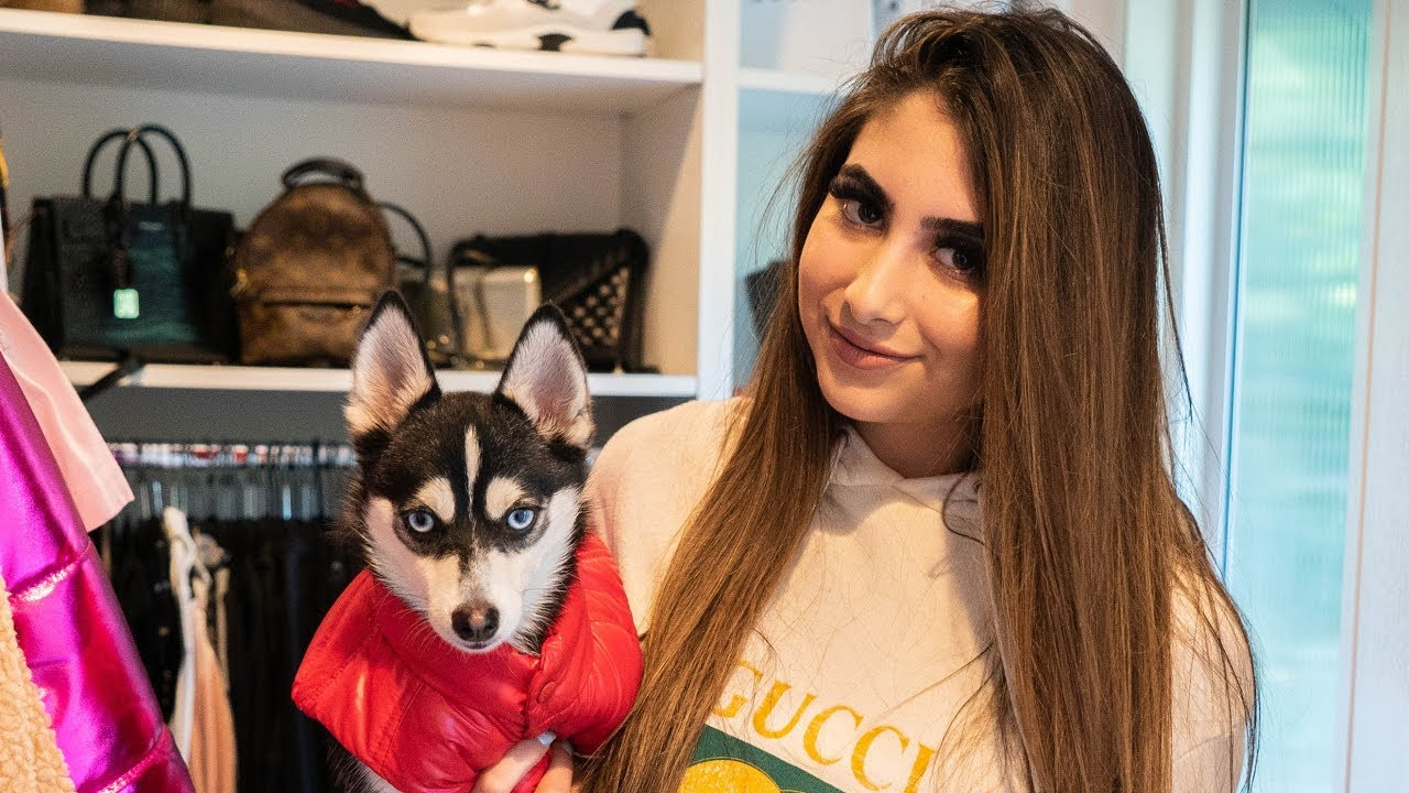 23a7fef9031 SHOPPING AT GUCCI FOR MY DOG - YouTube