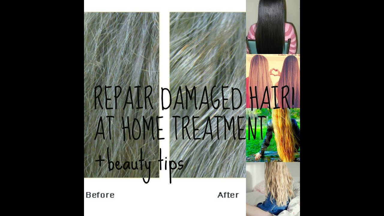 Save Your Split Endsdamaged Hair Amazing Home Remedybeauty Tips