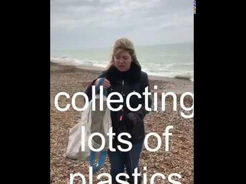 Maria Caulfield MP Seaford Beach Clean