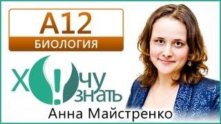 А12 по Биологии Демоверсия ГИА 2013 Видеоурок