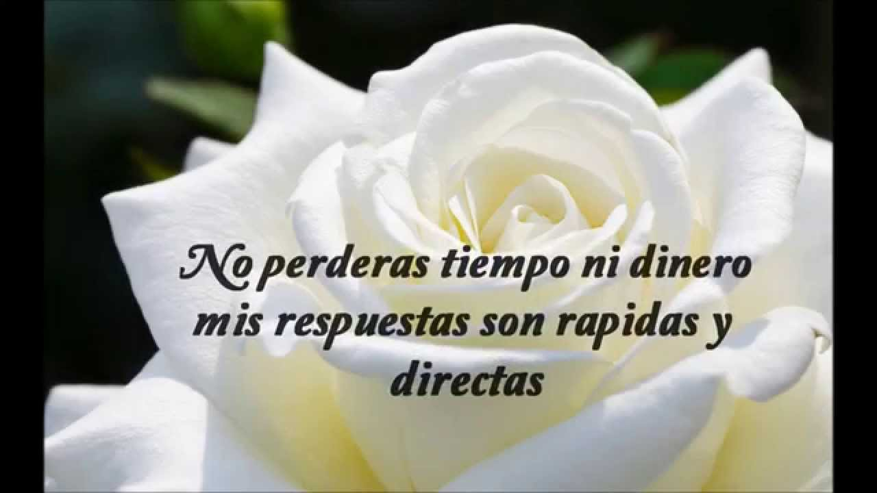 Tarot Rosa Blanca Youtube