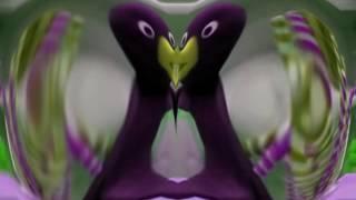 Deaf Pingu Season 1 Episode 18 + Deaf Major