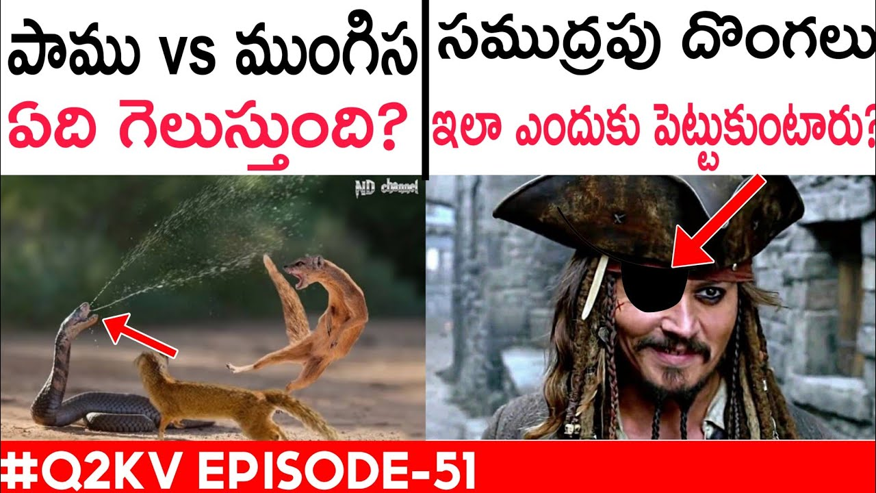 Why Do We Fart   Interesting And Unknown Facts In Telugu   Telugu Facts   Q2KV 51   KranthiVlogger