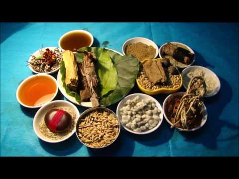 Tribal Herbal Medicines for Cancer Prevention and Cure by Pankaj Oudhia-1144