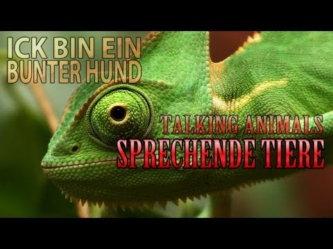SPRECHENDE TIERE: Talking Animals (Deutsch)