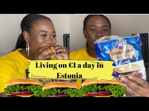 How to Live on €1 a day in Estonia   Tallinn hacks   Laide Bada