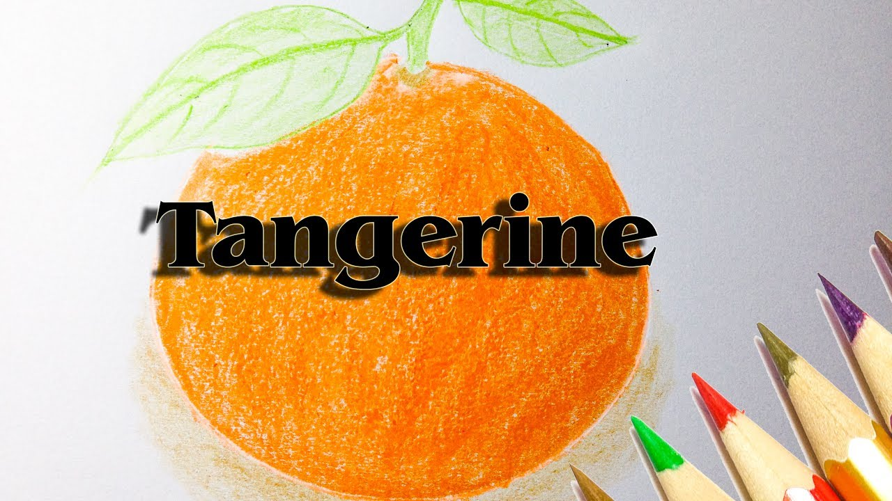 How To Draw An Orange And A Tangerine