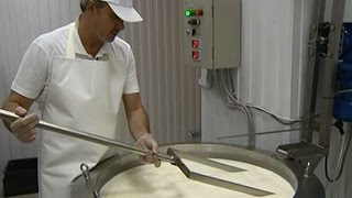 Как делают фермерский сыр! Семейная частная сыроварня!