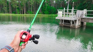 This TROPHY Pond is LOADED w/ GIANT Bass (Jig Fishing)