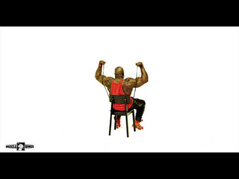 Muscle bands resistance band training Double Shoulder Press Shoulders Workout Tutorial thumbnail