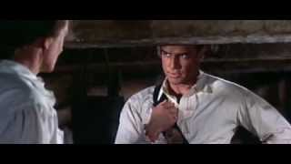 Mutiny On The Bounty [1962 / Official Trailer / English]