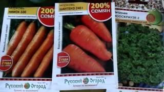Чтобы морковь взошла быстрее.