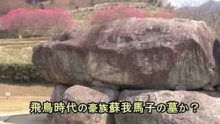 古墳時代後期で7世紀初めの頃とみられる奈良県明日香村の石舞台古墳を...